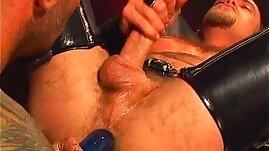 Pacific Sun Leather Bears scene extract